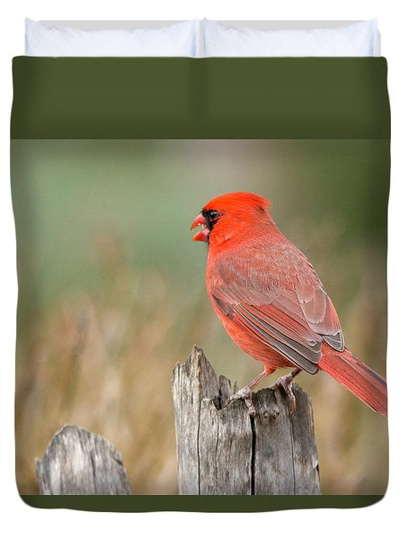 Duvet Cover featuring the photograph Male Cardinal by David Waldrop