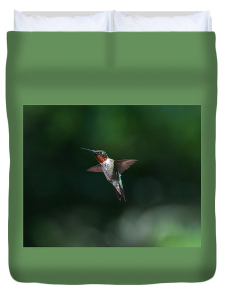 Male Ruby Throated Hummingbird Duvet Cover by Brenda Jacobs