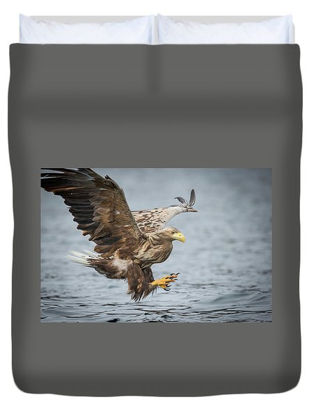 Male White-tailed Eagle Duvet Cover
