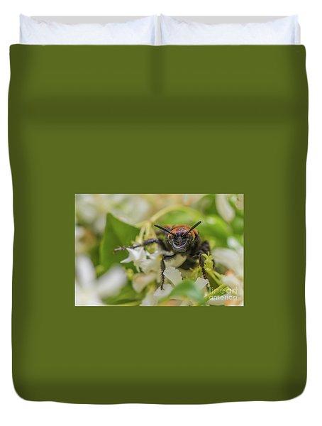 Duvet Cover featuring the photograph Mammoth Wasp Megascolia Maculata Maculata by Jivko Nakev