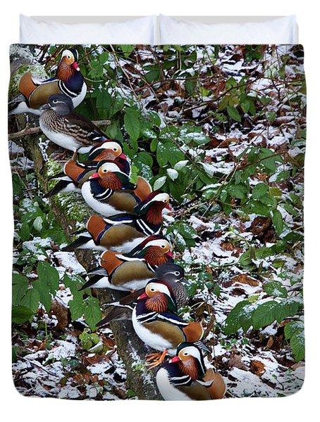 Mandarin Ducks Duvet Cover