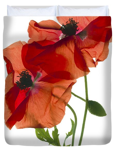 Margie's Poppy Duo Duvet Cover