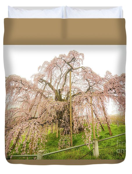 Miharu Takizakura Weeping Cherry02 Duvet Cover by Tatsuya Atarashi