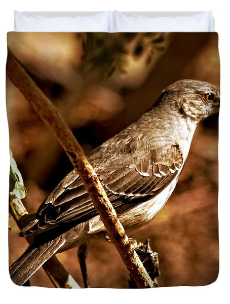 Mockingbird Duvet Cover by Robert Bales