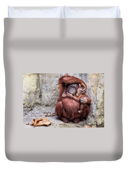 Mom And Baby Orangutan Duvet Cover by Stephanie Hayes