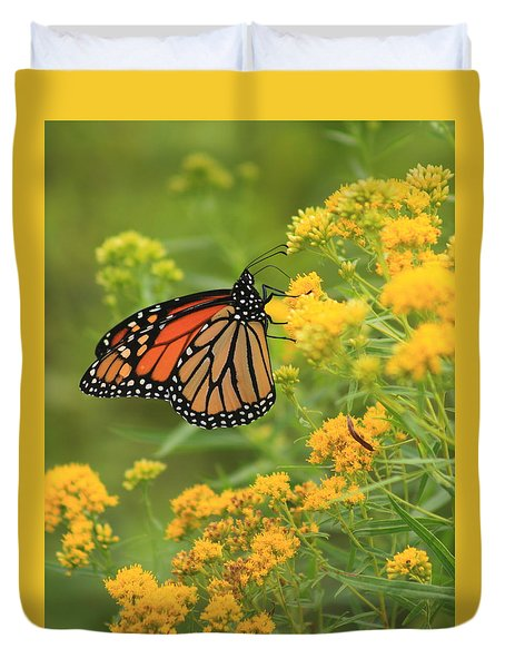 Monarch Butterfly On Goldenrod Duvet Cover
