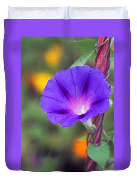 Duvet Cover featuring the photograph Morning Glory by Vadim Levin