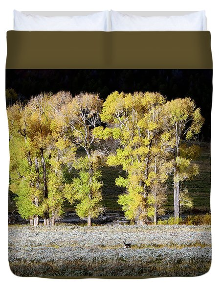Morning In Yellowstone Duvet Cover