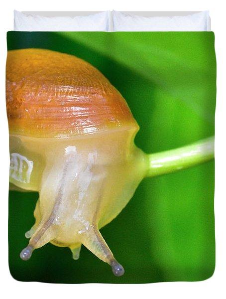 Morning Snail Duvet Cover