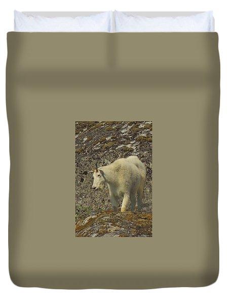 Mountain Goat Ewe Duvet Cover