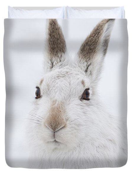 Mountain Hare In The Snow - Lepus Timidus  #1 Duvet Cover