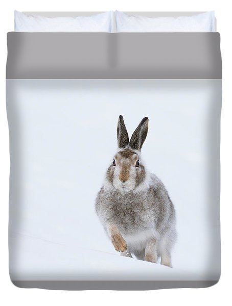 Mountain Hare - Scotland Duvet Cover