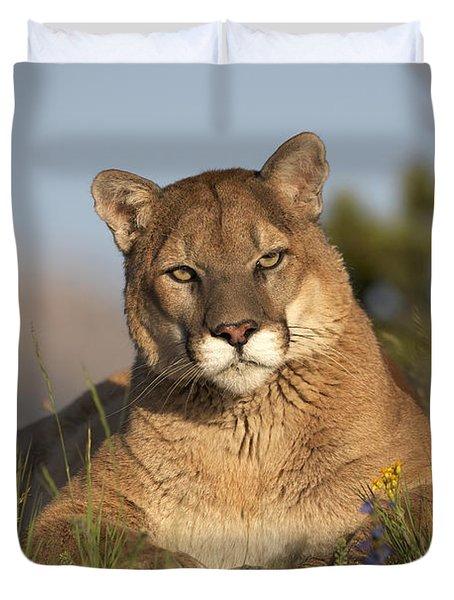 Mountain Lion Portrait North America Duvet Cover