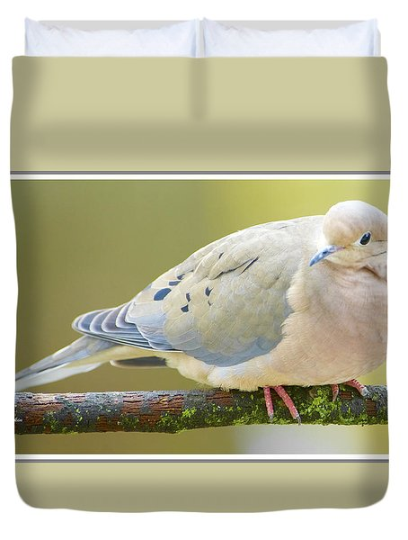 Mourning Dove On Tree Branch Duvet Cover