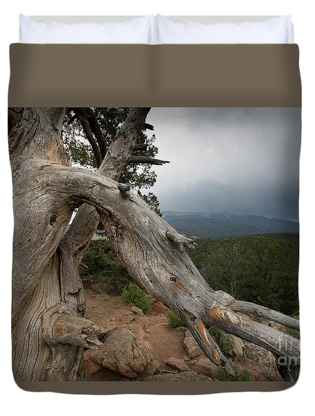 Old Tree On The Mountain Duvet Cover