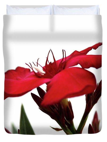 Oleander Blood-red Velvet 3 Duvet Cover