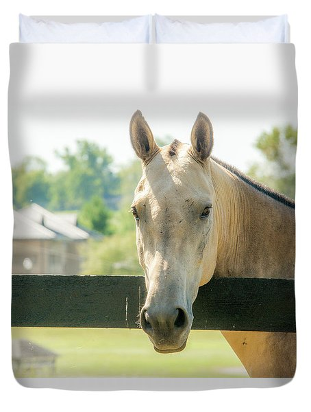 On The Fence Duvet Cover by Pamela Williams