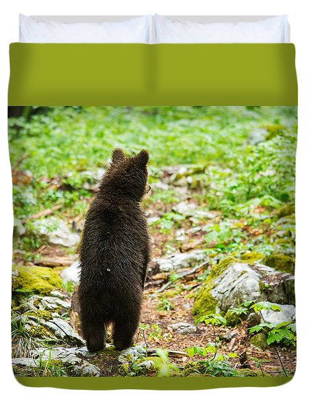 Duvet Cover featuring the photograph One Year Old Brown Bear In Slovenia by Ian Middleton