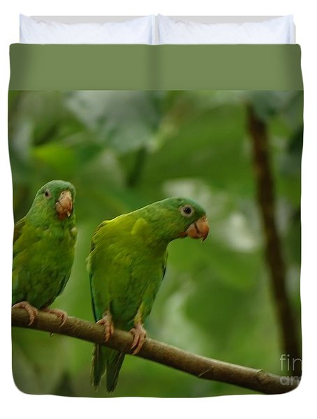 Orange -chinned Parakeets  Duvet Cover