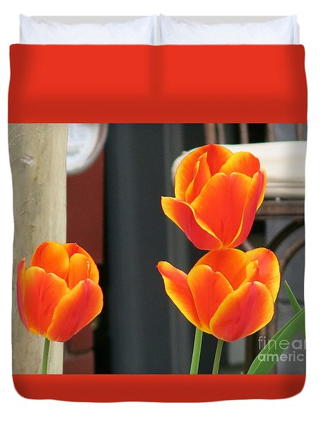 Orange Yellow-edged Tulips Duvet Cover by Rod Ismay