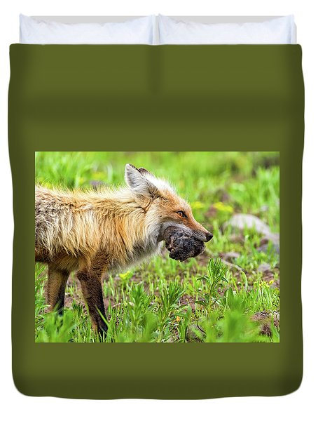 Out Foxed  Duvet Cover