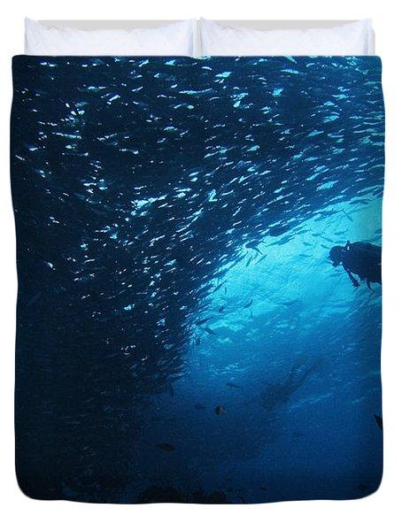 Palau, Diving Duvet Cover by Dave Fleetham - Printscapes