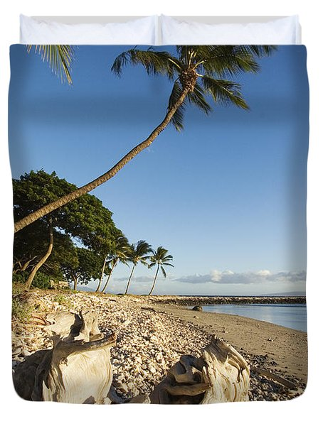 Palm And Driftwood Duvet Cover by Ron Dahlquist - Printscapes