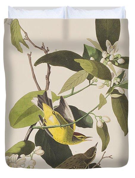 Palm Warbler Duvet Cover by John James Audubon