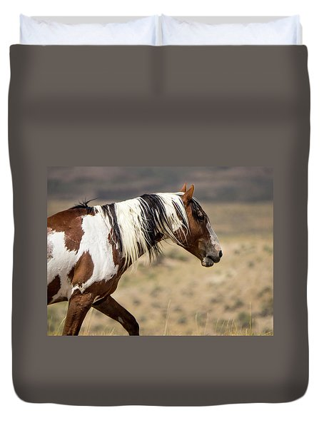 Picasso Of Sand Wash Basin Duvet Cover by Nadja Rider