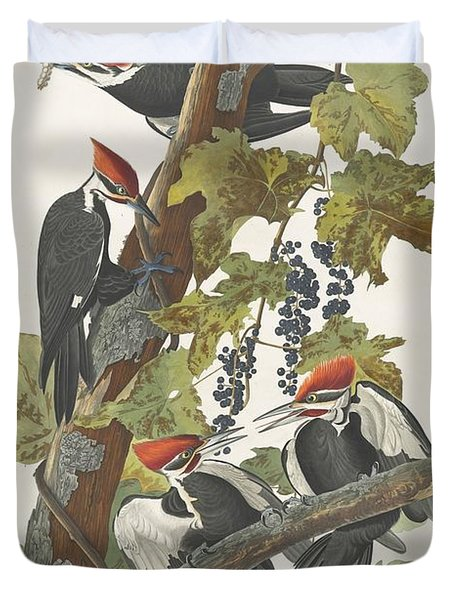 Pileated Woodpecker Duvet Cover by John James Audubon