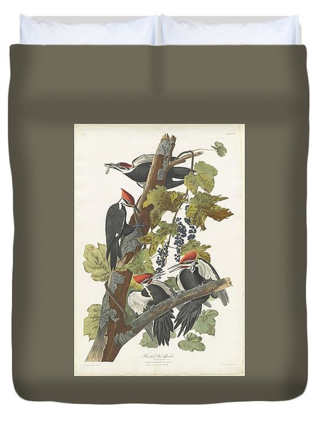 Pileated Woodpecker Duvet Cover by Rob Dreyer