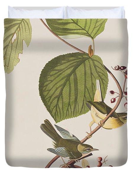 Pine Swamp Warbler Duvet Cover by John James Audubon