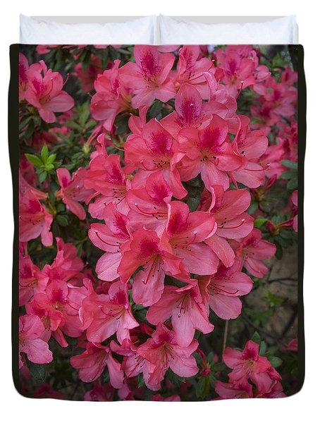Pink Azaleas Duvet Cover