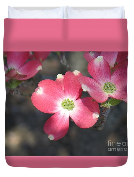 Pink Dogwood Duvet Cover by Rod Ismay