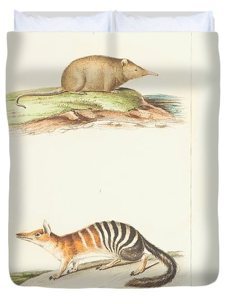 Planches  By Paul Gervais Duvet Cover