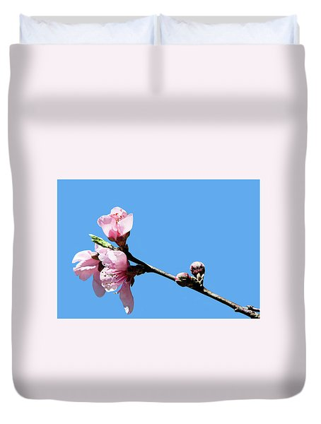 Duvet Cover featuring the photograph Plum Blossoms by Kristin Elmquist
