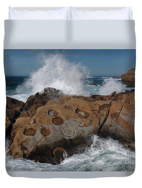Point Lobos Concretions Duvet Cover