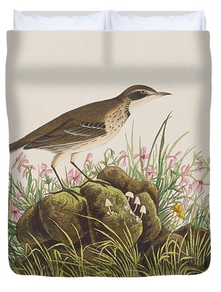 Prairie Titlark Duvet Cover