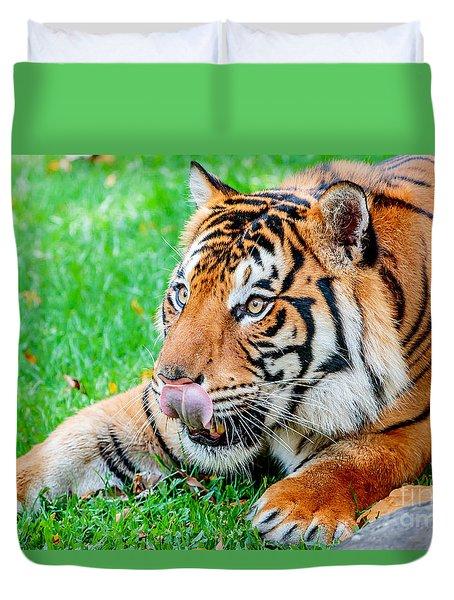 Pre-pounce Tiger Duvet Cover