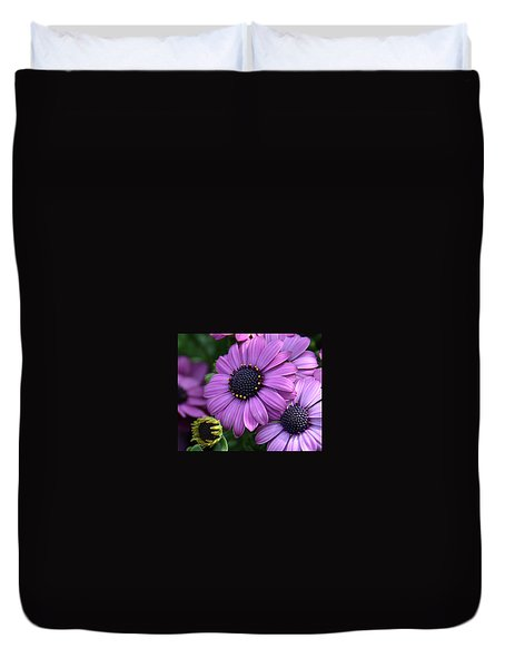 African Daisy Duvet Cover by Ronda Ryan