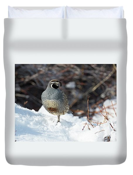 Quail Hollow Duvet Cover