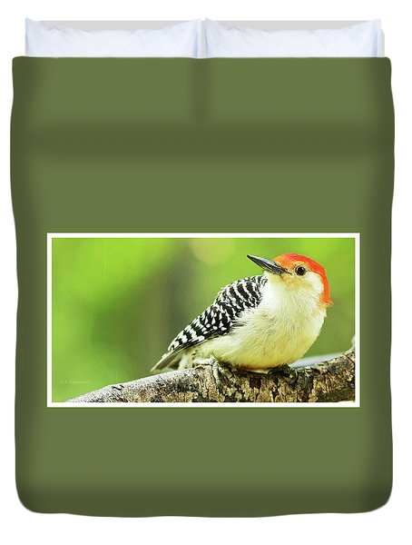 Red Bellied Woodpecker, Male, Animal Portrait Duvet Cover