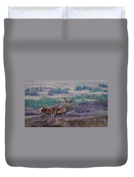 Red Deer  Duvet Cover