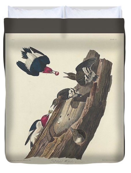 Red-headed Woodpecker Duvet Cover by Rob Dreyer