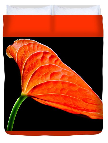 red Lily blossom Duvet Cover