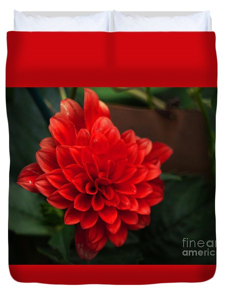 Red Duvet Cover by Nancie DeMellia