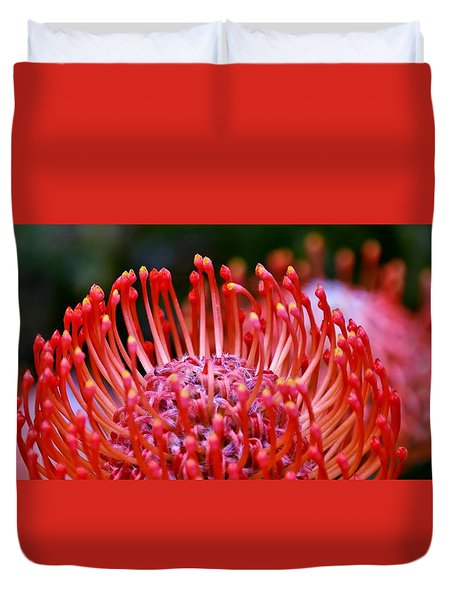 Red  Pincushion Protea Duvet Cover