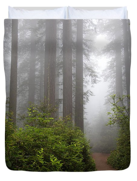 Redwood Grove Duvet Cover