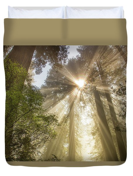 Redwoods Sunburst Duvet Cover