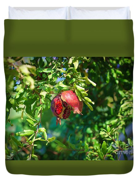 Ripe Pomegranate On The Tree In Jerusalem During Sukkoth Duvet Cover